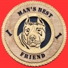 American Staffordshire Terrier - Product Image