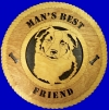 Aus Shepard / Border Collie - Product Image