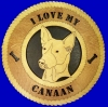 Canaan - Product Image